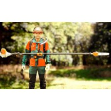Pole Pruner Petrol